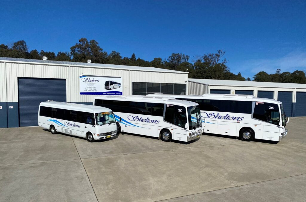 3 Sizes Of Buses